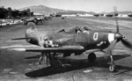 The 332nd first flew P-39 Airacobra's in Italy